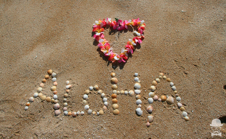 Disfraces Hawaianos Aloha